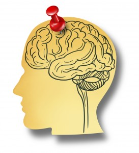 Drawing of a brain in a head-shaped silhouette, pinned to the background with a red drawing pin.